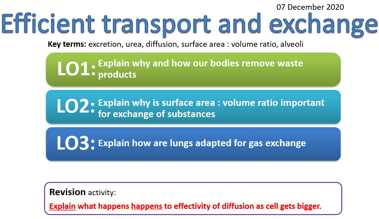 EDEXCEL CB8 Exchange and transport in animals