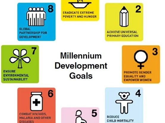 How successful were the Millennium Development Goals