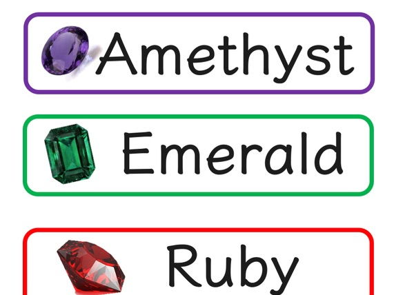 5x Ability Group Tray Labels
