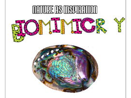 STEM - Biomimicry for Young Children - Sea Life
