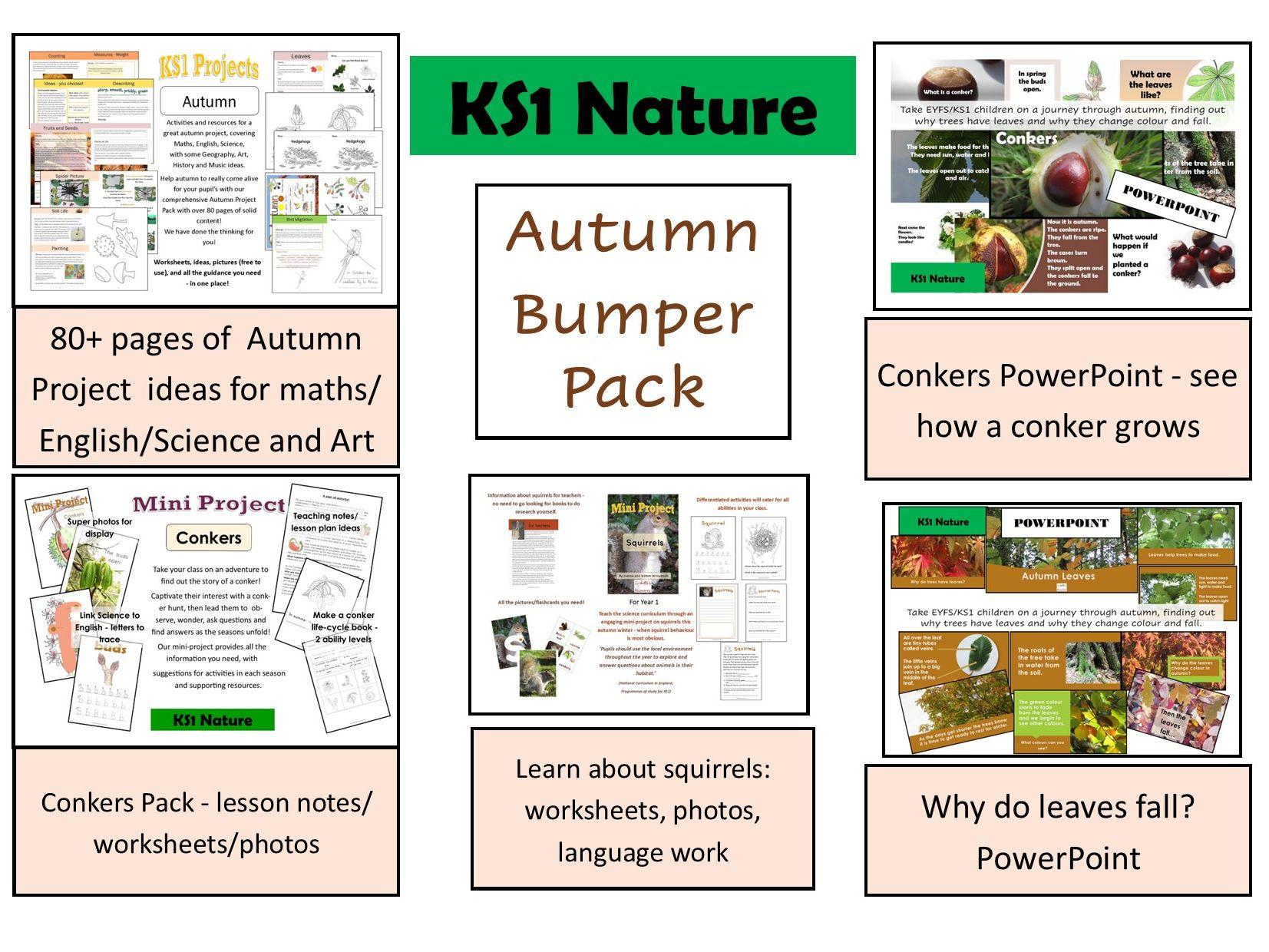 Bumper autumn project pack
