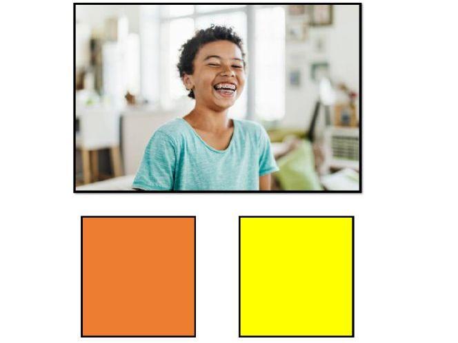 Colourful (Colorful) Semantics Level 2 (Subject-Verb) Basic Set (20 photos)
