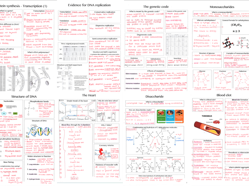 Biology Alevel (SNAB) paper 1 revision summary sheets -blank templates  & completed