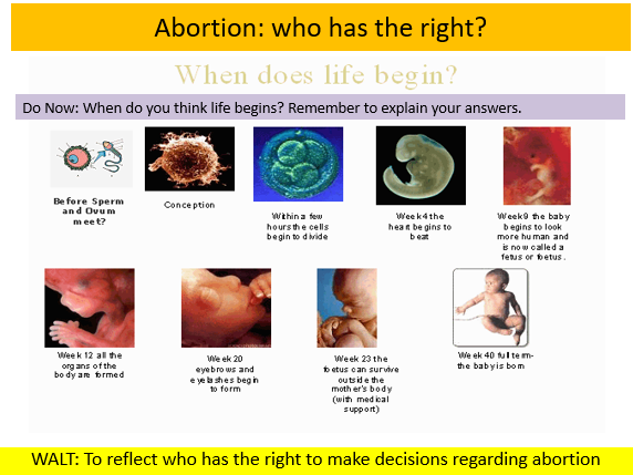 When Does life begin? Abortion lesson