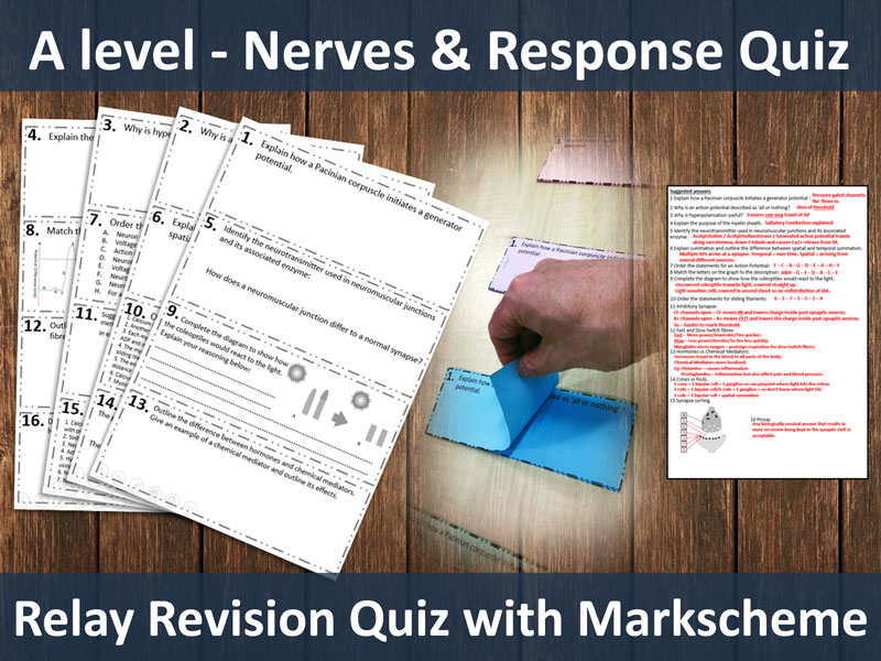 Nerves & Response - Relay Revision Quiz