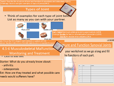 LO4.1-6 Musculoskeletal System Cambridge Technicals L3 Health and Social Care Unit 4