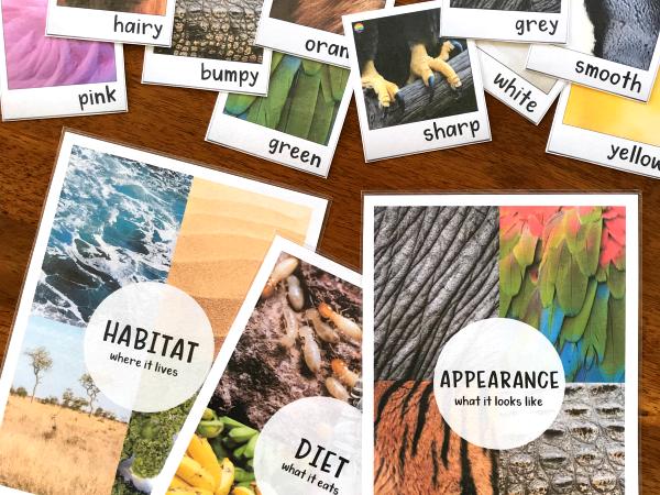 Animal Adjective Word Wall Posters
