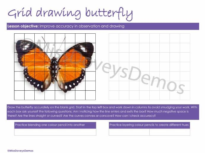 Grid Drawing Butterfly