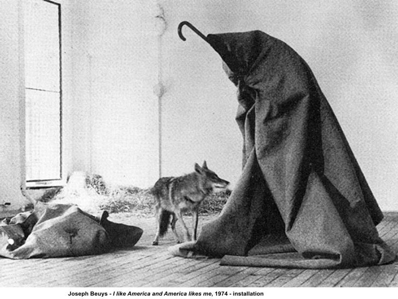 Joseph Beuys, his quotes on modern art & his artist life - for students, pupils, art teachers