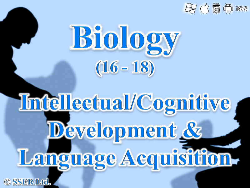 C.2.b. Development - Intellectual, Cognitive & Language Acquisition