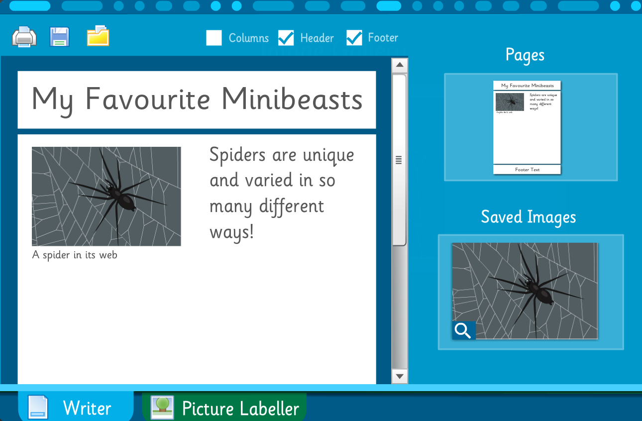 Make Your Own Information Book: Minibeasts, Reptiles and Amphibians - Interactive Activity - KS2 Literacy