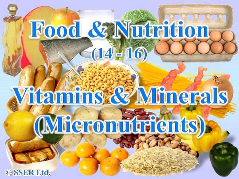 1.2 Vitamins & Minerals