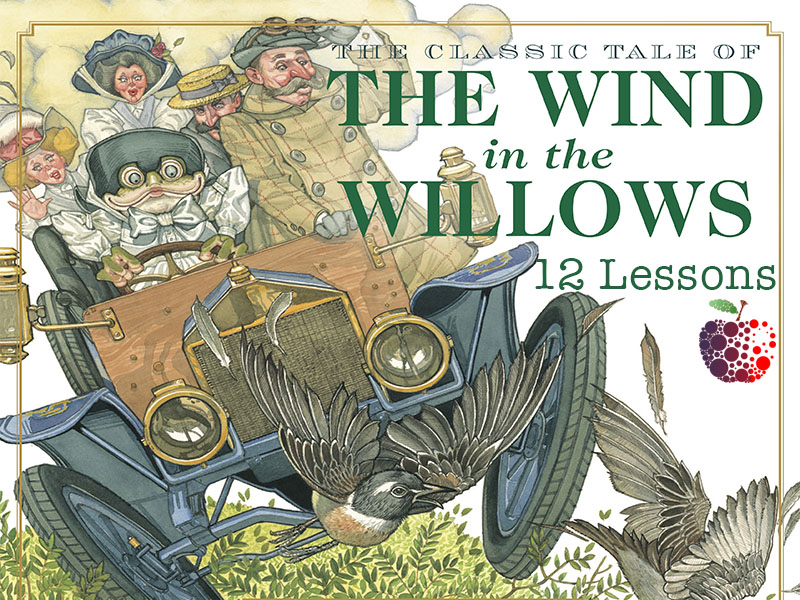 Wind in the Willows Planning