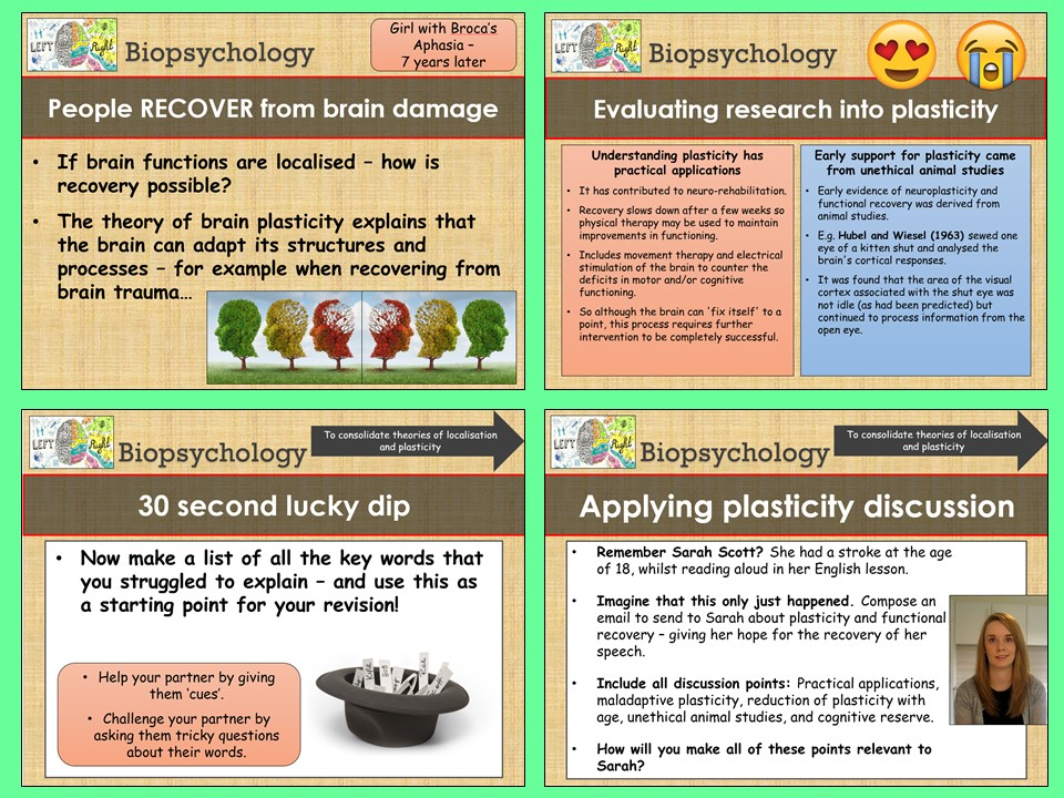 AQA A-level Psychology - Plasticity of Brain Function - Biopsychology Topic