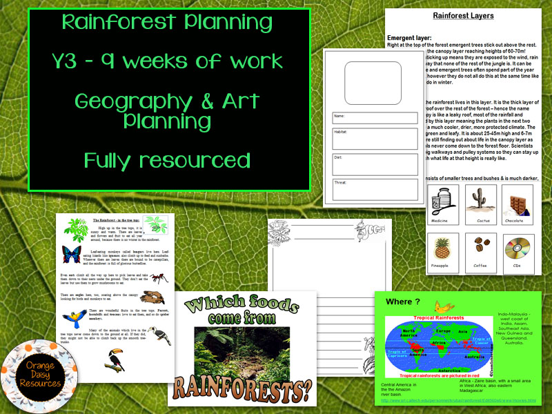 Y3 Full Rainforest Planning and Resources for Topic and Art