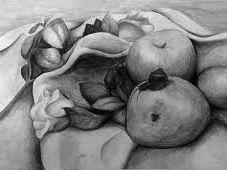 GCSE Drawing Study Natural Forms