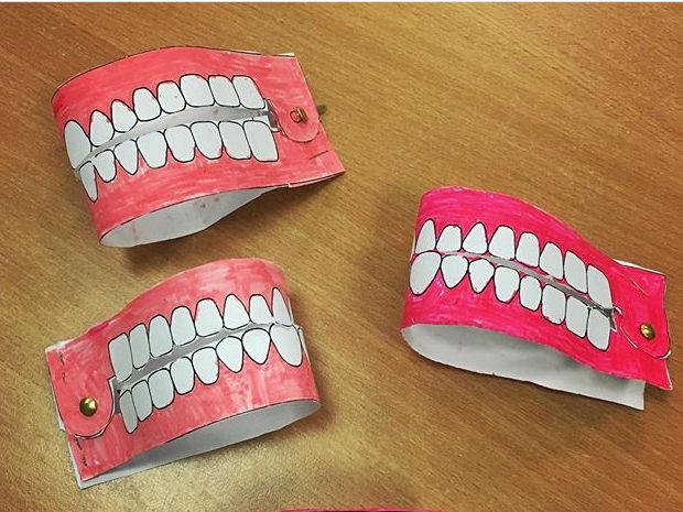 Model Teeth Activity