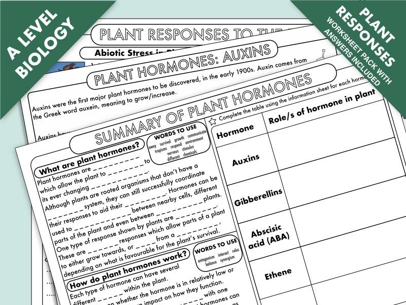 A Level Biology: Plant Responses (Plant Hormones)