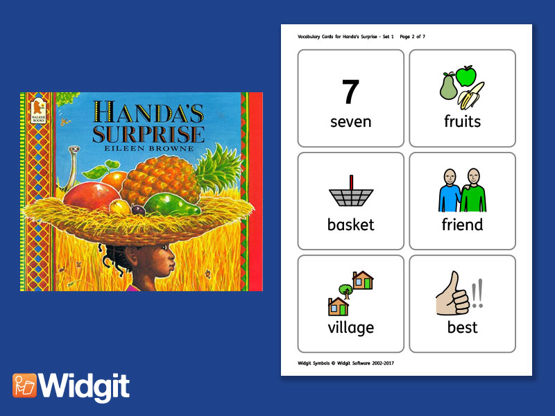 Handa's Surprise - Big Book Flashcards with Widgit Symbols