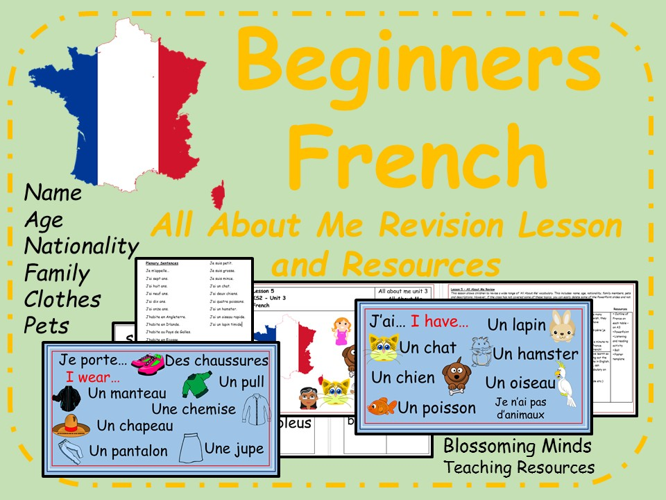 French lesson and resources - KS2 - All About Me Revision