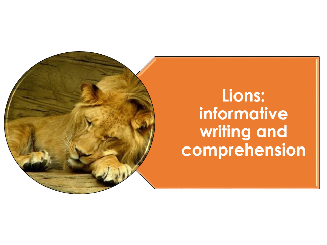 Lions informative writing non chronological report and word search