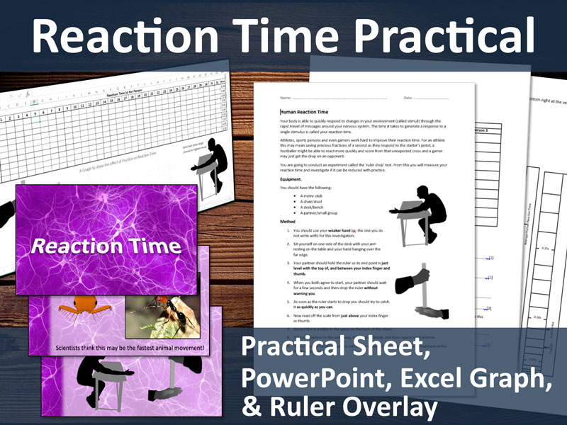 Reaction Times Lesson Resources (GCSE Practical) - PowerPoint, Practical Sheet and more.