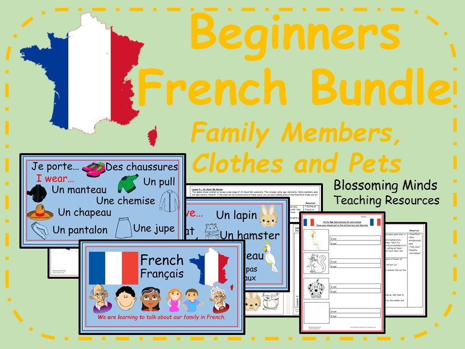 French Lesson Bundle- Family members, clothes and pets