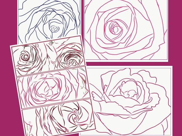Rose Worksheets for Colouring and Different Media