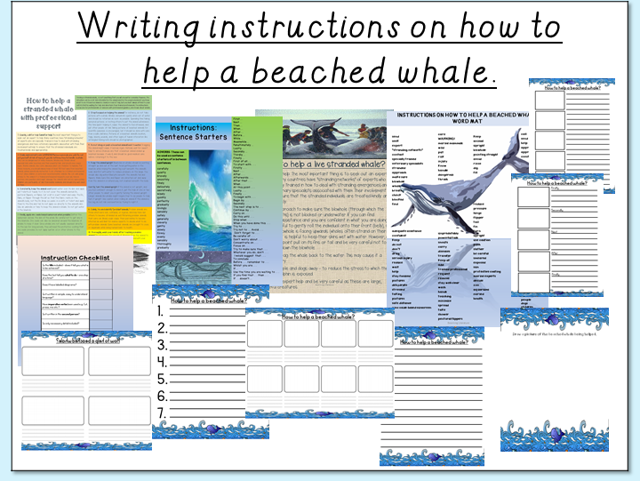 Writing instructions on how to help a beached whale