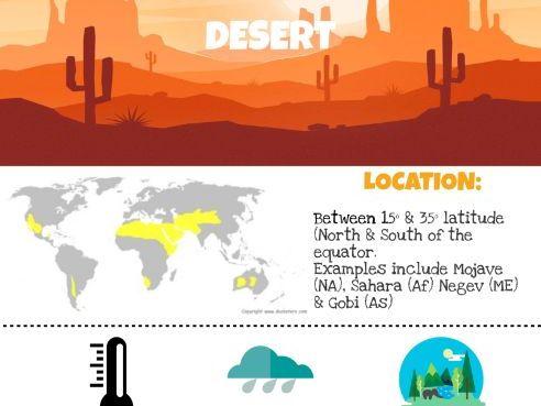 Desert Infographic