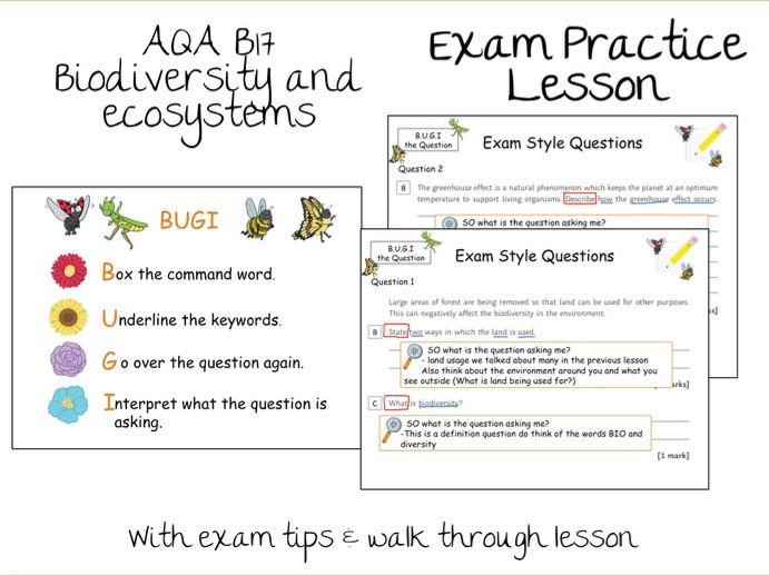 B17 Biodiversity and Ecosystems Exam Question Practice Walk through Lesson