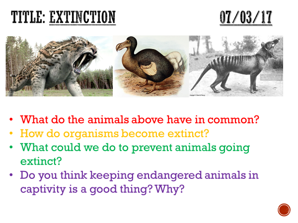 Extinction - complete lesson (KS3)