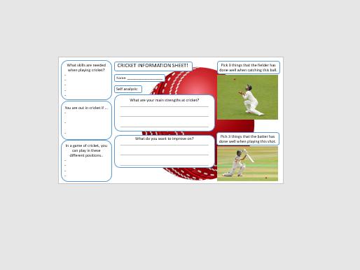 Cricket non-participant / self-assessment worksheet