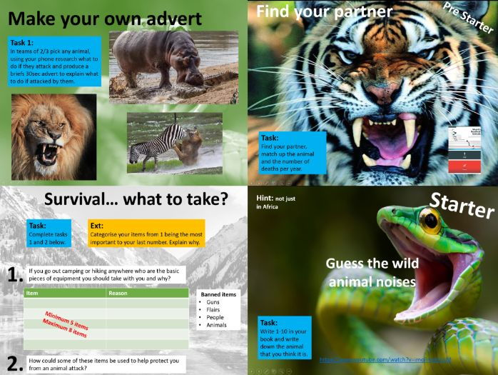 Survival / Animal Attack Lesson
