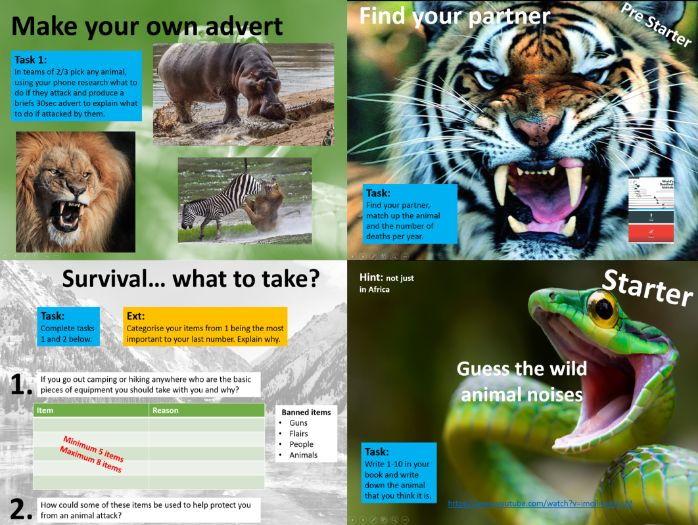 Survival / Animal Attack Lesson