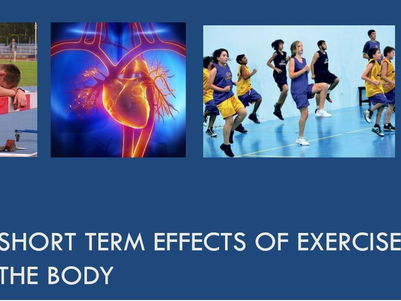 Long and Short Term Effects of Exercise GCSE PE