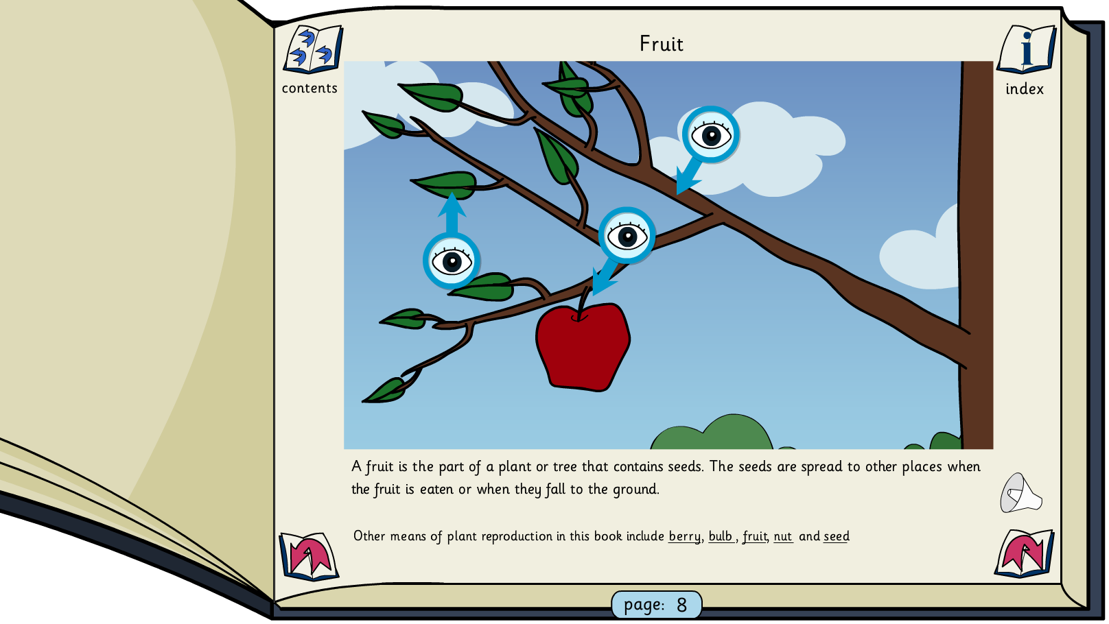 Plants and Trees Interactive Information Book -  KS1/KS2 Literacy
