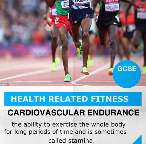 GCSE PE - Components of Fitness: Posters