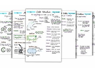 Biology Bundle (Notes)
