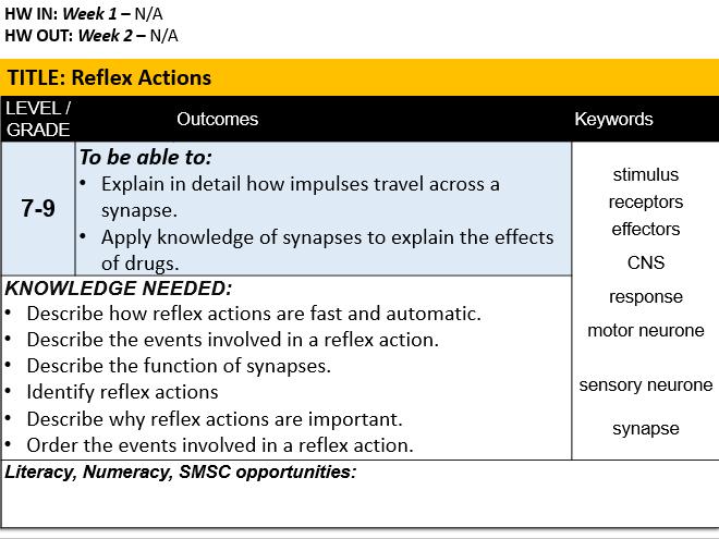 B10.3 Reflex Actions