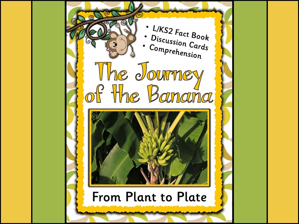 From Plant to Plate: The Journey of the Banana {Lower KS2}