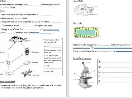 Year 7/KS3 Science Revision- Bio 1- Plant Reproduction, Food Chains, Cells, Microscopes, Skeleton