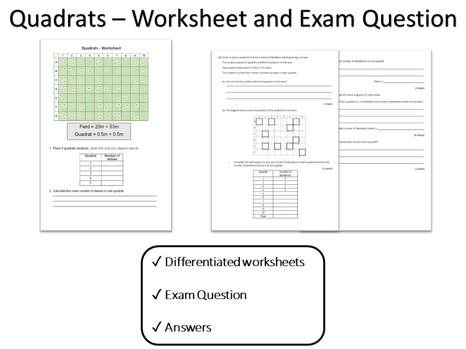 Quadrats for GCSE Biology and Comnbined Science