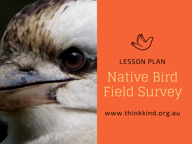 Native Australian Birds: Field Survey Lesson