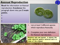 KS4 B12.1 Types of reproduction