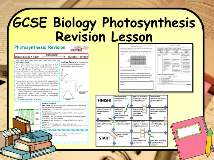 GCSE Biology Photosynthesis Revision Lesson