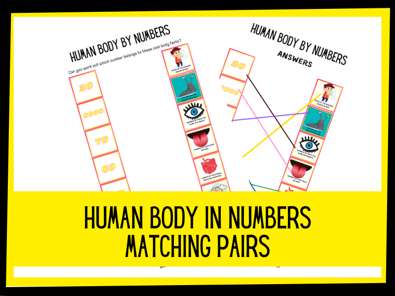 Human body in numbers matching pairs | KS1 KS2 Primary Science