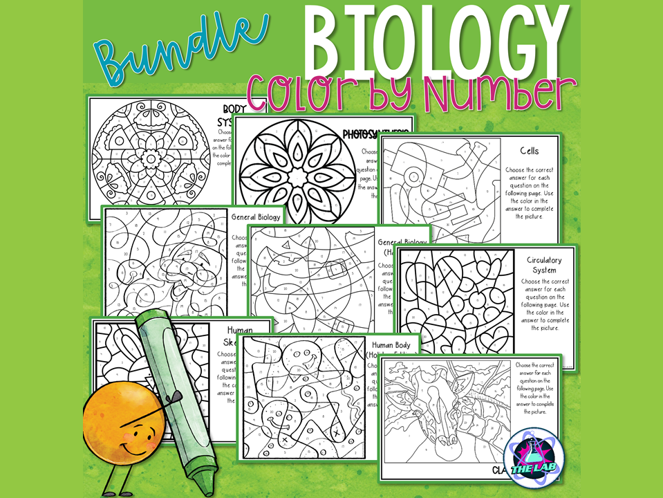 Biology Colour by Number Bundle