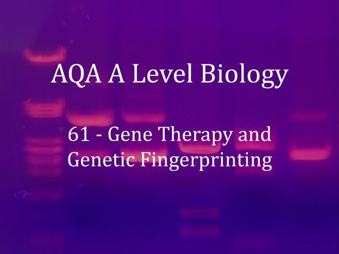 AQA A Level Biology Lecture 61 - Gene Therapy and Genetic Fingerprinting