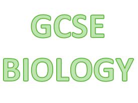 GCSE Biology Cells and Respiration